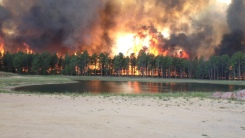 The-terrifying-effect-of-the-fires